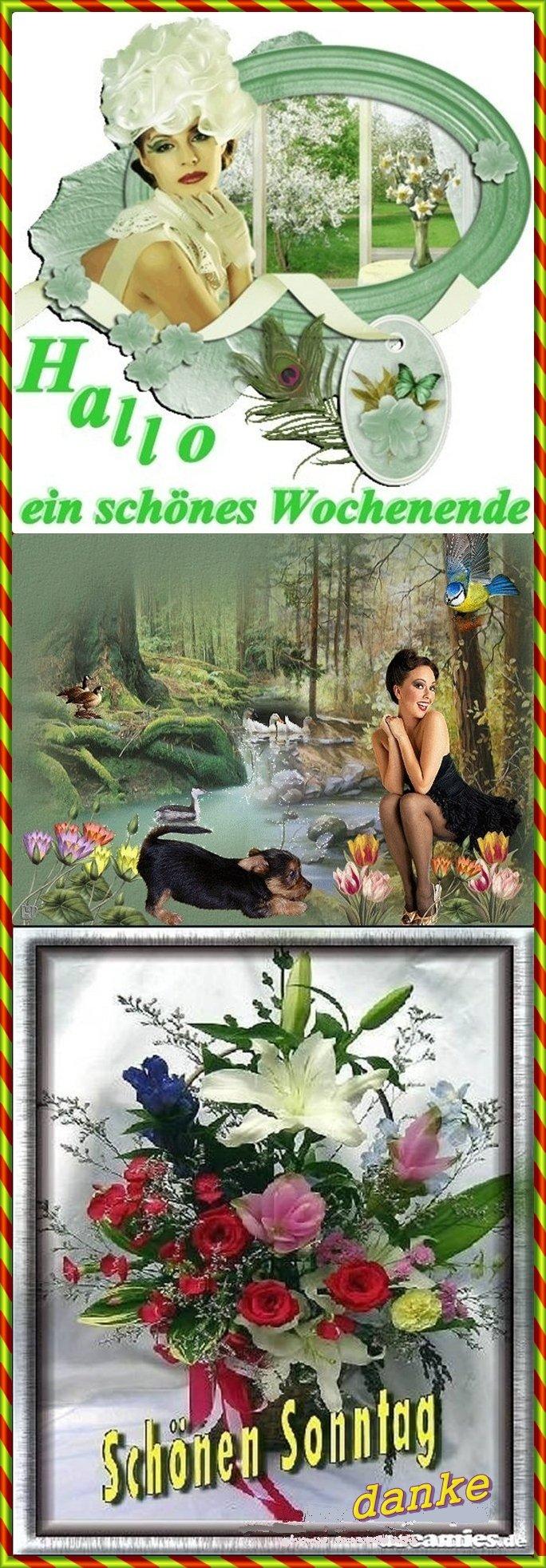 An den Beitrag angehängtes Bild: http://img28.dreamies.de/img/221/b/juiv8iubbyc.jpg