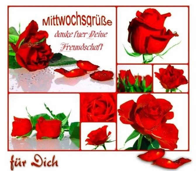 An den Beitrag angehängtes Bild: http://img28.dreamies.de/img/60/b/kourp2udbvh.jpg