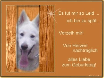 An den Beitrag angehängtes Bild: http://img28.dreamies.de/img/762/b/p0sibagih61.jpg