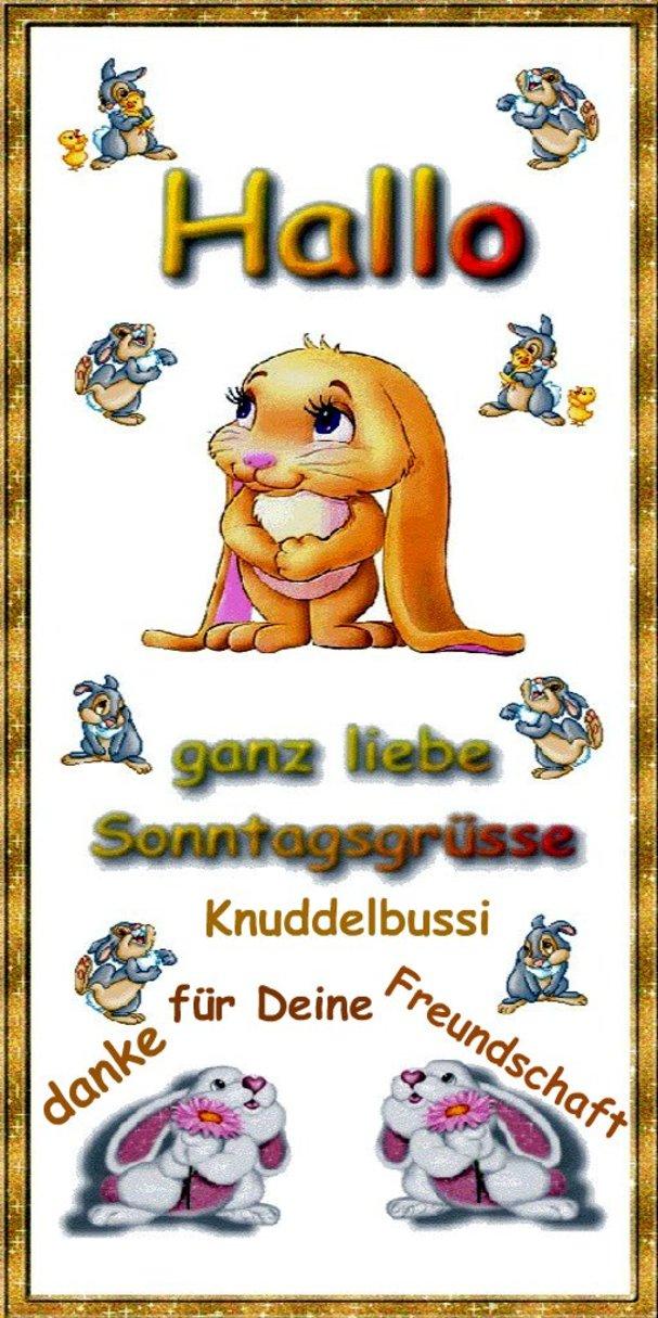 An den Beitrag angehängtes Bild: http://img28.dreamies.de/img/776/b/32f76swoywz.jpg