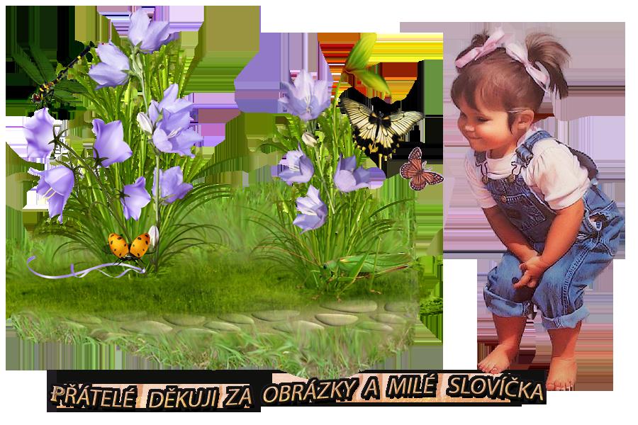 Gästebuch Banner - verlinkt mit http://nd06.jxs.cz/076/903/ac5a5071d1_100662991_u.jpg