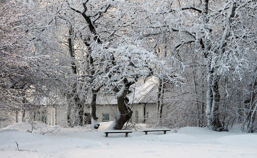 Zimski pejzaži-Winter landscapes - Page 6 372k10gttuf