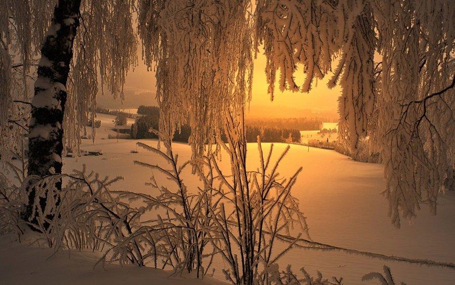 Zimski pejzaži-Winter landscapes Gj13pj7gf8g